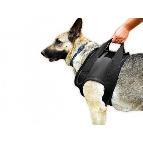 Rehabilitation Harness for Front Legs Size XL