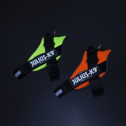 IDC® High Visibility Powerharness