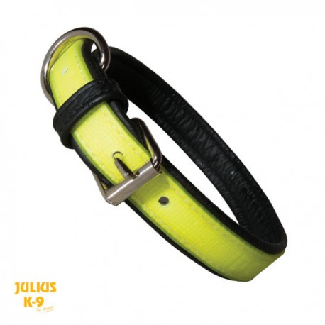 IDC® - Lumino Fluorescent Collar