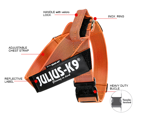 IDC Color& Gray Belt Harness