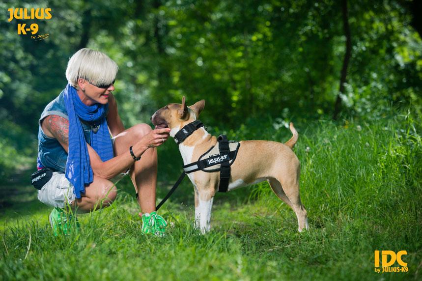 idc-dog-harness-size0-17