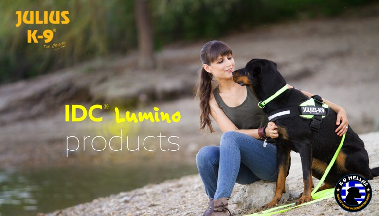 Lumino Leash